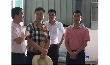 County party secretary wang jinshi visited our company